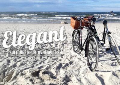 elegant-800x500